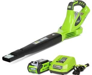 Greenworks 40V 150 MPH Variable Speed Cordless Blower